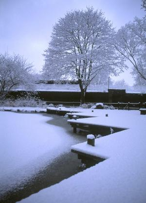 Twinkle Park Pond in Snow Charlotte Turner Gardens Deptford London